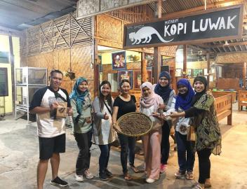 Things You Might Want to Know Before Drinking Luwak Coffee at Yogyakarta